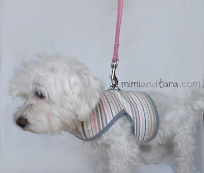vest harness for dog