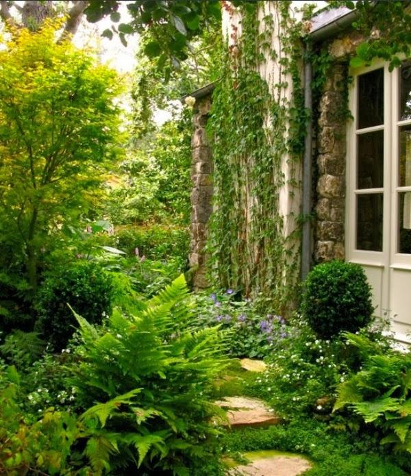 Jardín lateral sombrío
