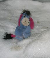 Eeyore in the snow