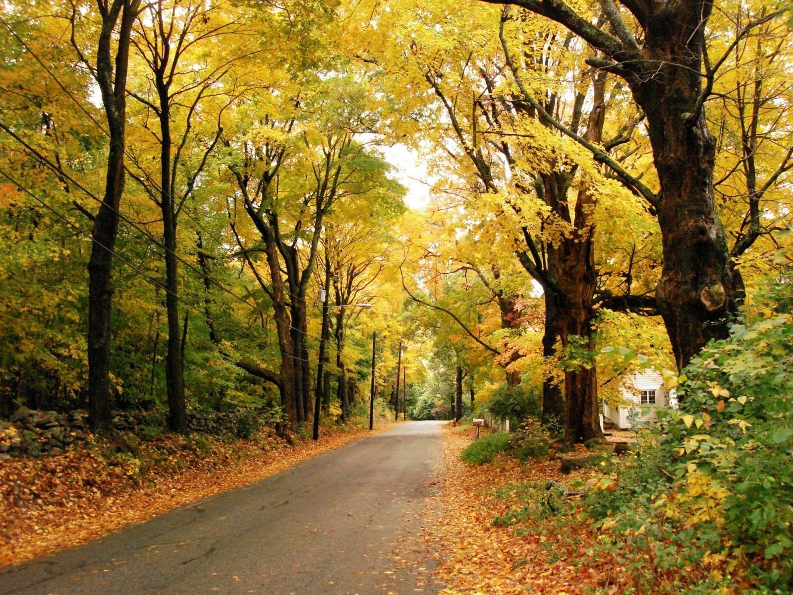autumn season wallpapers hd - photo #44