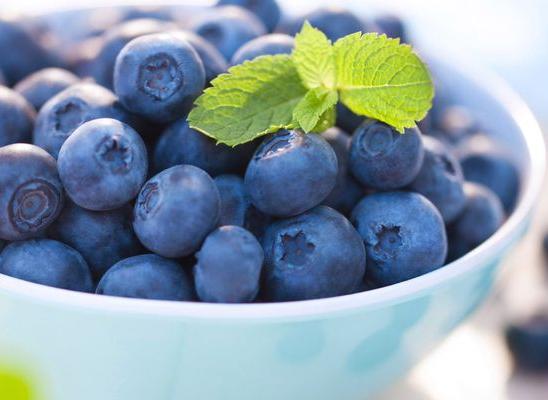 manfaat blueberry untuk mata