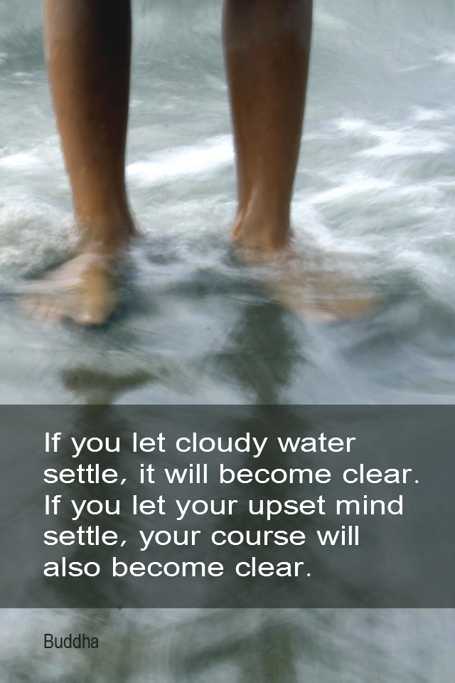 visual quote - image quotation for EMOTIONS - If you let cloudy water settle, it will become clear. If you let your upset mind settle, your course will also become clear. - Buddha