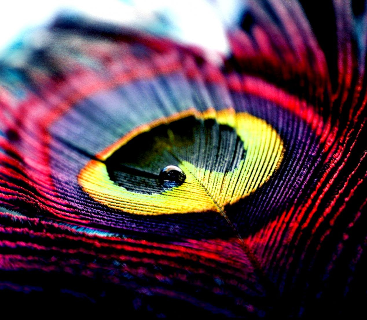 Abstract Photography Desktop Wallpapers  Wallpapers Collection