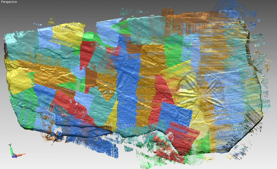 Partially modelled 3D laser scan of c 8th Century stone slab - Marigold decoration in lower right