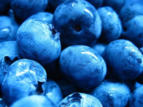 Havregrynsgrøt med frukt og bær.