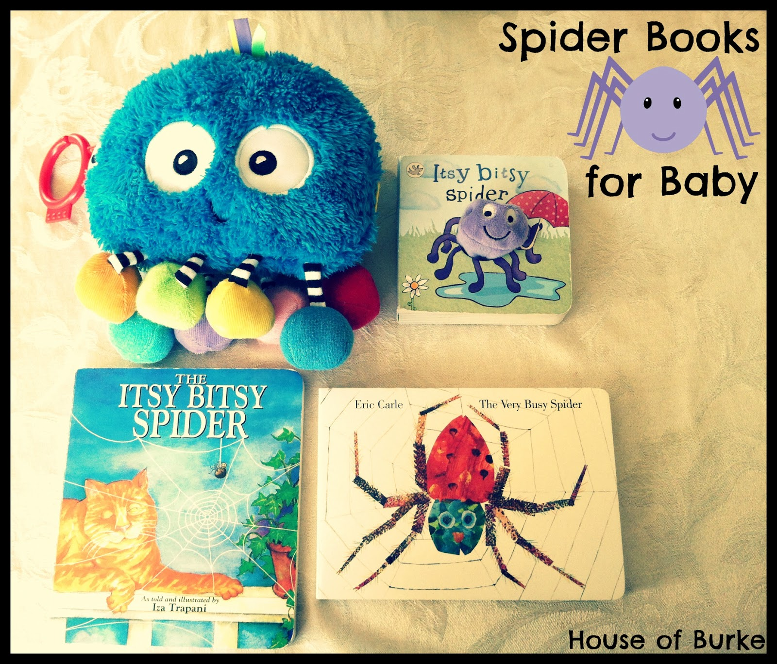 house of burke baby exploring spiders
