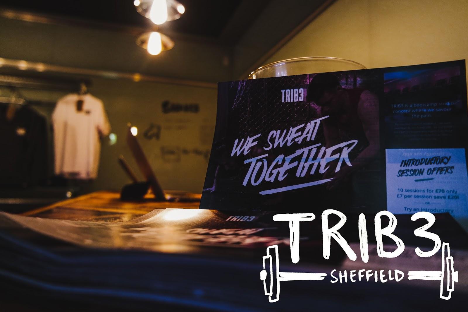 TRIB3_Sheffield-1