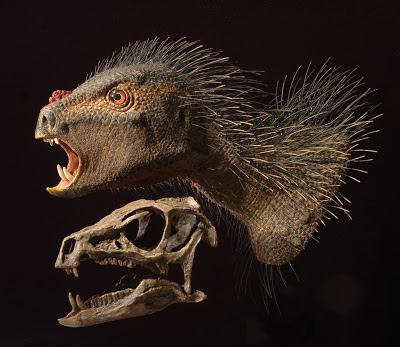 Pegomastax skull