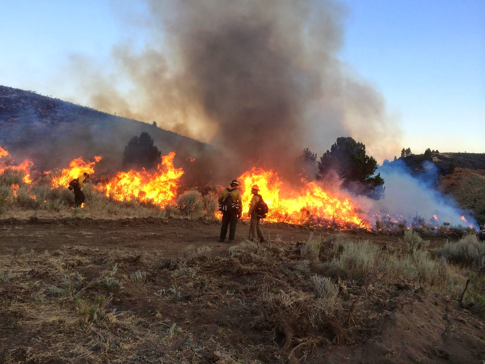 Rye Valley Fire