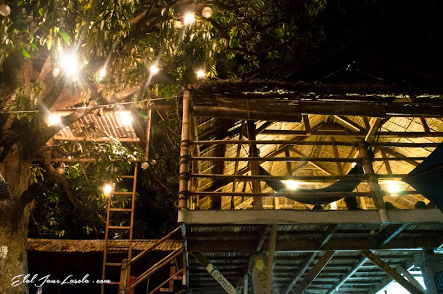 The Circle Hostel La Union | Tree and Common Area