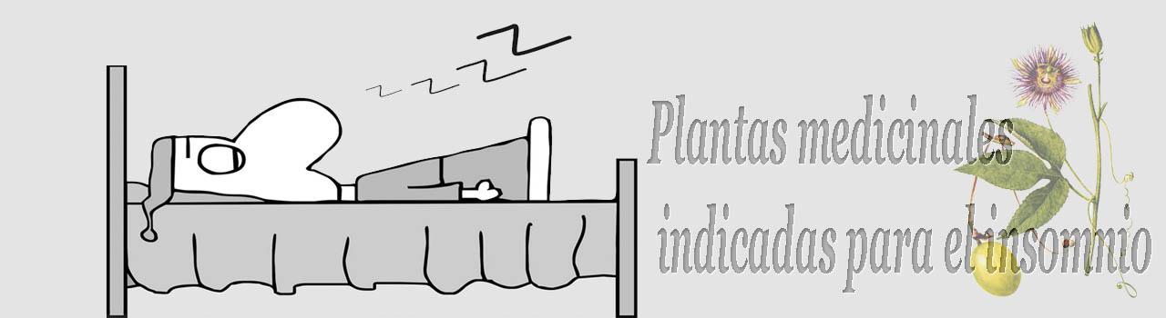 Siete plantas medicinales indicadas para el insomnio