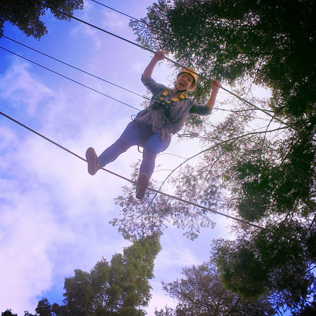 Tree trekking at Center Parcs Whinfell