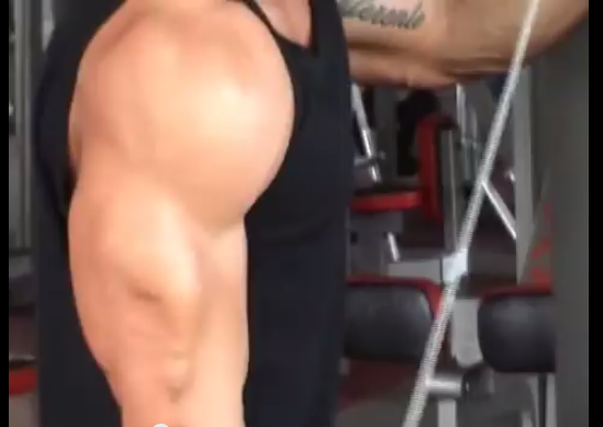 lazar arm training