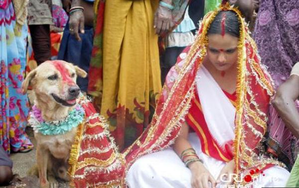 Remaja perempuan mengahwini anjing untuk buang sial