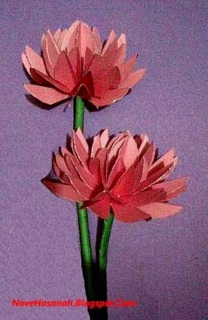 cara atau langkah disertai gambar cara membuat bunga teratai dari kertas bekas sampul makalah
