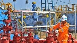 PT Pertamina Hulu Energi WMO - Recruitment For SCM, Goods Procurement Dept Pertamina Group May 2015
