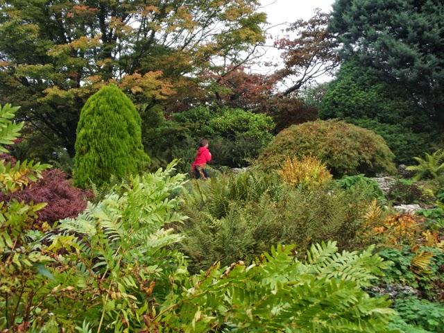 Sizergh Castle rock garden