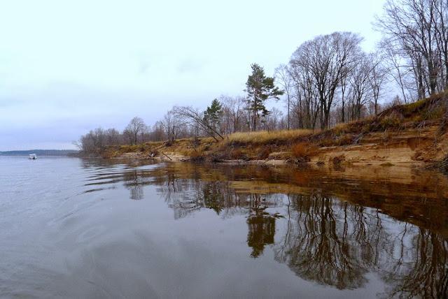 прогноз клева рыбы в реке березино