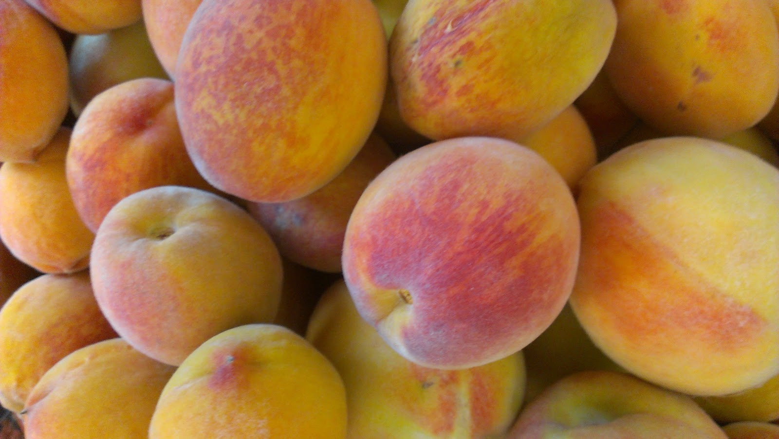 Glut: a year in my patch: Thursday Garden Gobbles - Peaches