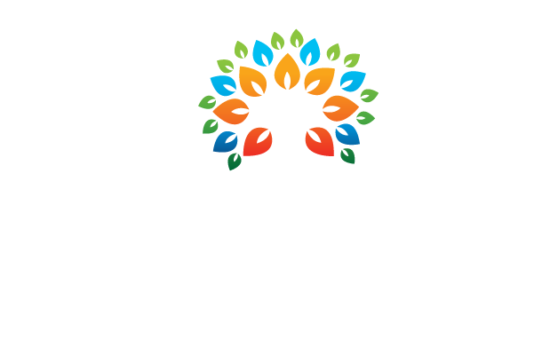 How To Ascend | Experience Life as Your Highest Self | Reality Creation and Law of Attraction