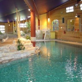 Pro anim lyon octobre 2012 for Technicien piscine suisse