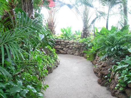 This is a picture of the walkway through the palm room.