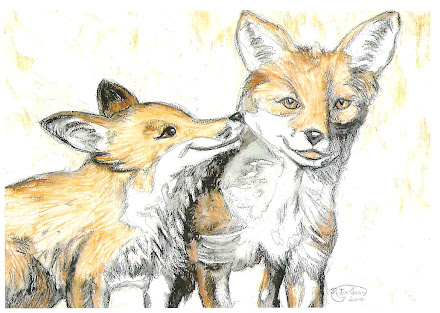Two Foxes pic