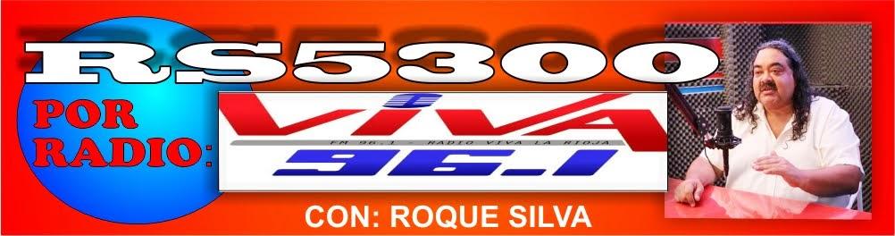 RS 5.300