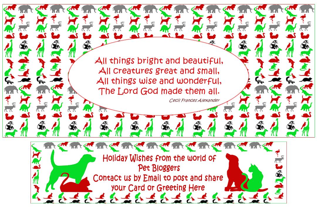 MEOWY WOOF-WOOF CHRISTMAS