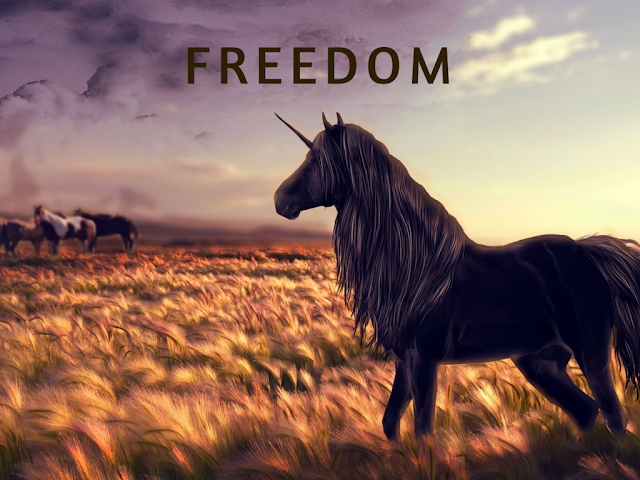 Tips about Freedom