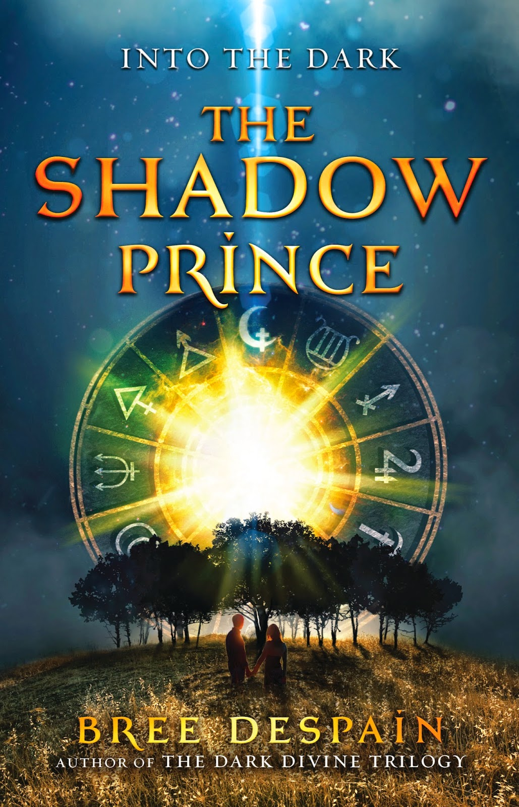 into the dark book one: the shadow prince by bree despain book cover
