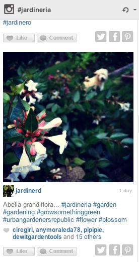 Herramienta de gestión de Instagram