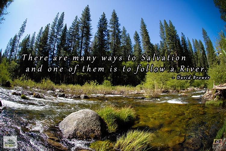 Inspirational Nature Quote - David Brower