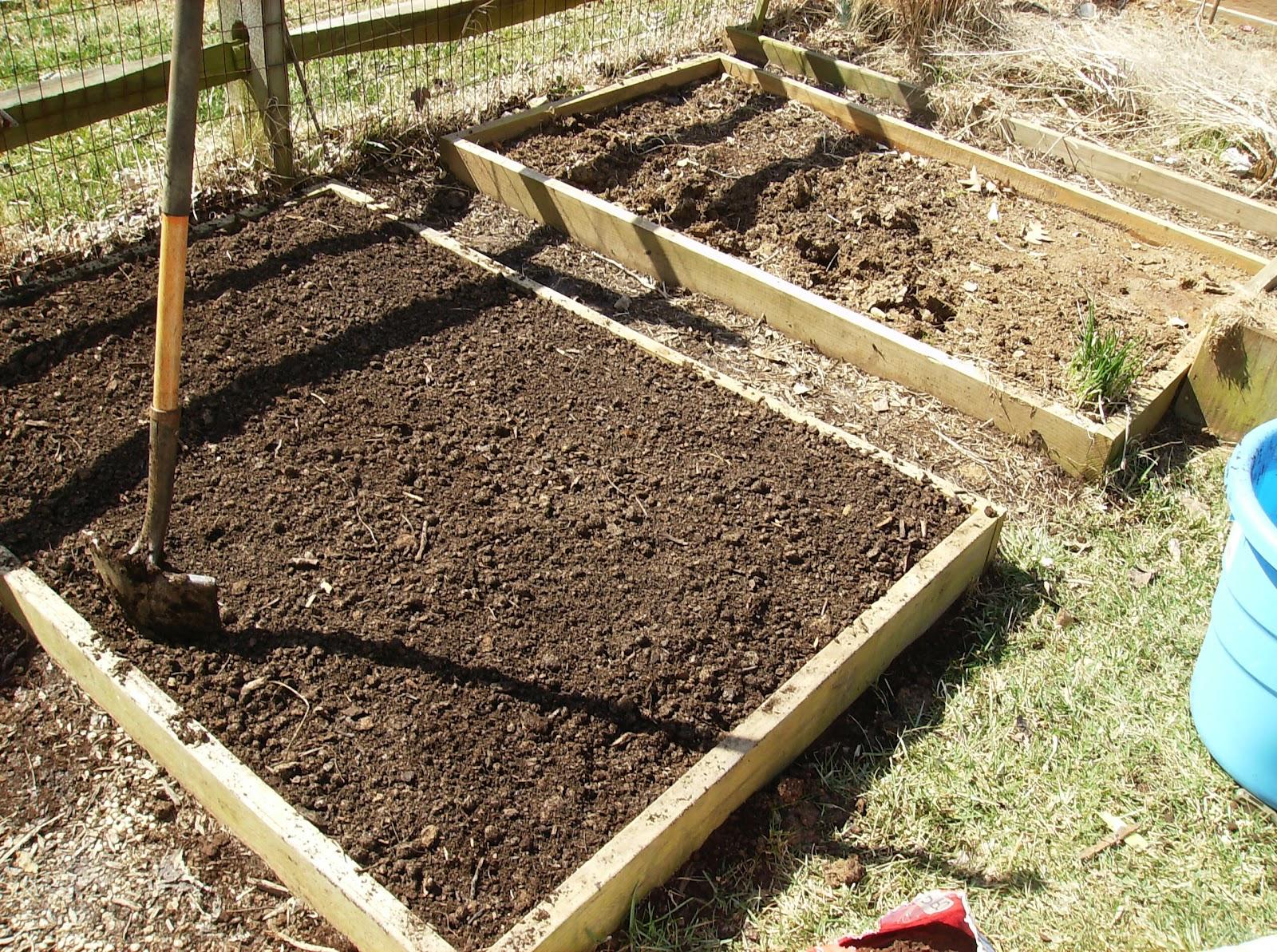 The rusted vegetable garden for Garden soil
