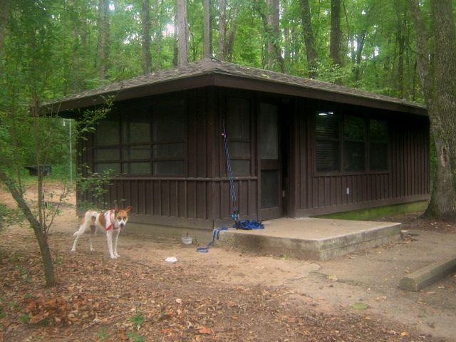 And Here Is Our Cabin. Originally, It Was A Screened Shelter But They  Upgraded It To A Limited Use Cabin. Fun Fact: Caddo Lake Is The Only  Natural Lake In ...
