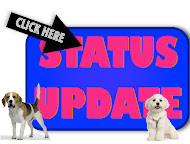 Dog Status Updates