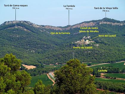 Detall de l'espai entre el Turó de Coma-roques i el Turó de la Vinya Vella, des del Coll de la Llebre