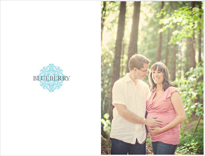 amazing beautiful san francisco maternity photography with natural lighting in redwood grove