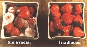 IRRADACION de los alimentos Polémica forma de conservarlos