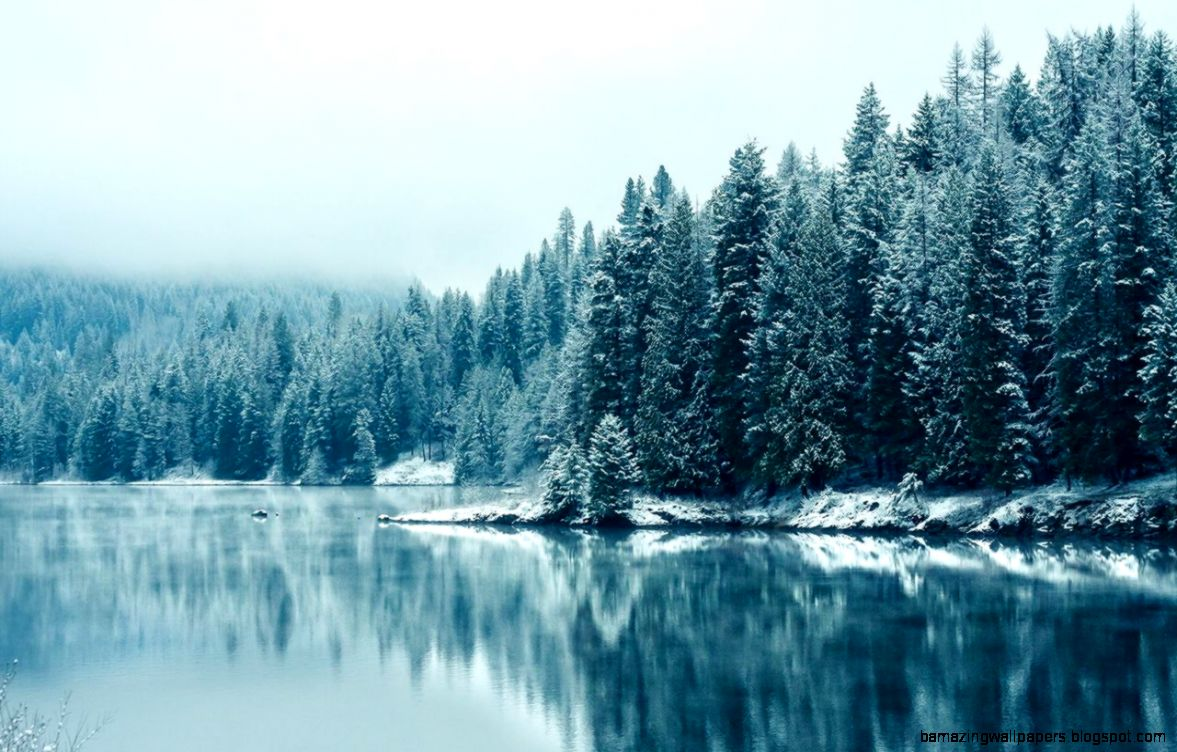 Winter Backgrounds Tumblr 2015  Onlybackground