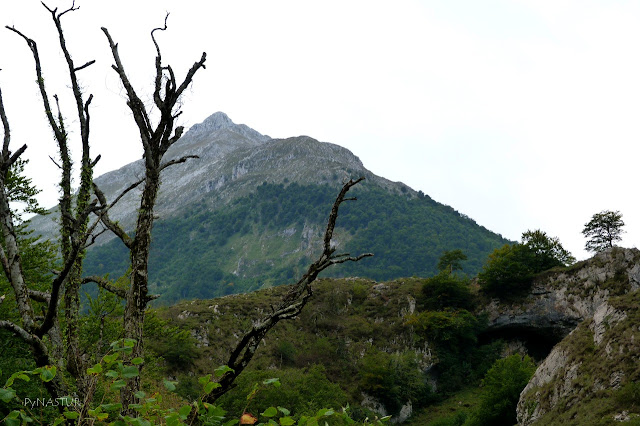 Pico Cabronero - Senda de La Jocica - Amieva - Asturias