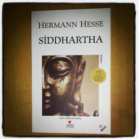 siddhartha hermann hesse critical essay Free barron's booknotes summary for steppenwolf by hermann hesse-critical analysis free book notes study guide plot synopsis essay themes notes book report.
