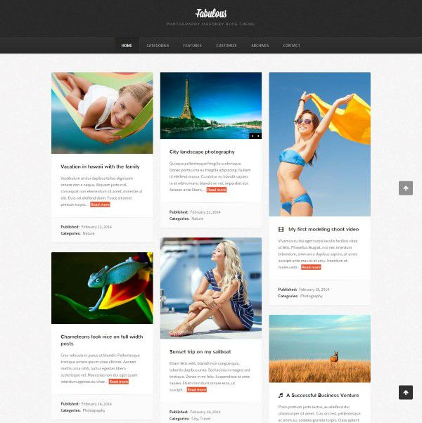 Fabulous responsive theme for blogging