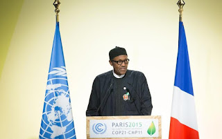 President Buhari at the UN Climate Change Conference