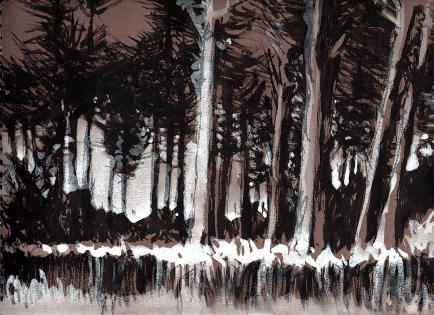 Forêt des Landes by Regis Lagoeyte