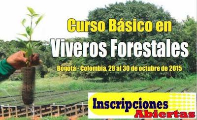Ingenieria forestal curso b sico en viveros forestales for Libro viveros forestales