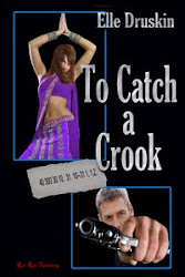 Elle Druskin's To Catch Series