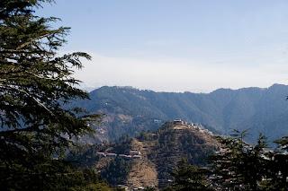 Jakhu Hills - Shimla