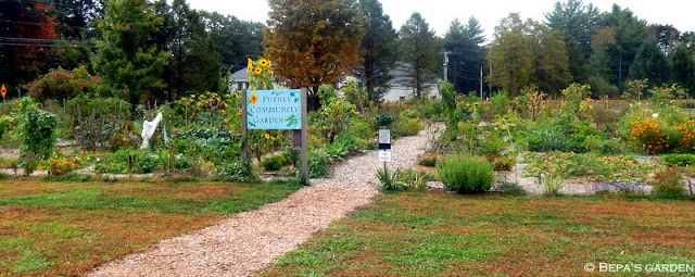 Bepa 39 S Garden September 2013