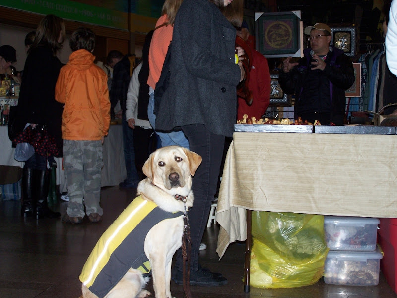 cabana in her raincoat, sitting in front of a crowded flea market table, she is looking off to the side and you can see the whites of her eyes